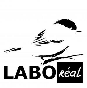 LABOreal-VISUEL-logo