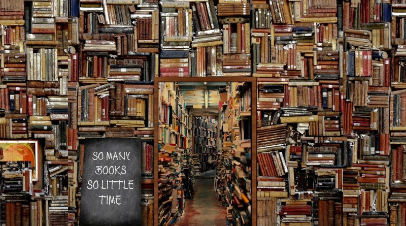 Bibliothèque d'urgence d'Internet Archive_à la une