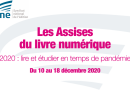Assises du livre numérique: L'évolution du marché de la romance en France en 2020