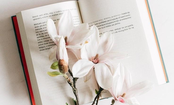 Jardin bibliothèque_à la une